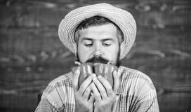 Χαρακτηριστικός τύπος αγροτών Φεστιβάλ συγκομιδών αγροτικής αγοράς Ξύλινο υπόβαθρο λαχανικών λαβής αγροτών ατόμων ώριμο γενειοφόρ στοκ εικόνες