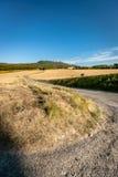 Χαρακτηριστικό γαλλικό τοπίο το καλοκαίρι με τους τομείς σιταριού Στοκ Εικόνες