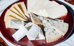 Χαρακτηριστικό ιταλικό ορεκτικό φιαγμένο από τυρί: Fontina, Gorgonzola, Τ στοκ εικόνα με δικαίωμα ελεύθερης χρήσης