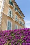 Χαρακτηριστικό πορτοκαλί κτήριο με τα λουλούδια bougainvilleas στο Μονακό, Γαλλία Στοκ Εικόνα