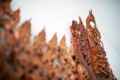Χαρασμένη γραμμή Ταϊλανδός λουλουδιών με το μαλακό φως Στοκ Φωτογραφίες