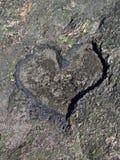 χαρασμένη καρδιά Στοκ Εικόνες