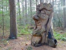 Χαρασμένο ξύλο κεφάλι με το δασικό υπόβαθρο στοκ εικόνες