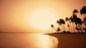 Χαραυγή στο νησί φοινικών Ασιατικό πορτοκαλί υπόβαθρο παραλιών ηλιοβασιλέματος φιλμ μικρού μήκους