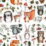 Χαριτωμένα δασόβια εικονίδια ζωολογικών κήπων παιδικών σταθμών εικόνων Watercolor ζώων Στοκ Φωτογραφίες