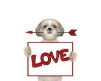 Χαριτωμένα βέλος και πλαίσιο εκμετάλλευσης σκυλιών με την αγάπη Στοκ εικόνα με δικαίωμα ελεύθερης χρήσης