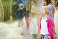 Χαριτωμένα ζώα προσοχής μικρών κοριτσιών στο ζωολογικό κήπο τη θερμή και ηλιόλουστη θερινή ημέρα Ζώα ζωολογικών κήπων προσοχής πα Στοκ φωτογραφίες με δικαίωμα ελεύθερης χρήσης