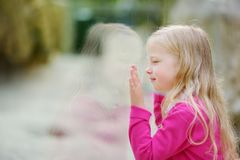 Χαριτωμένα ζώα προσοχής μικρών κοριτσιών στο ζωολογικό κήπο τη θερμή και ηλιόλουστη θερινή ημέρα Ζώα ζωολογικών κήπων προσοχής πα Στοκ εικόνες με δικαίωμα ελεύθερης χρήσης