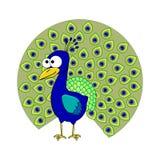 Χαριτωμένα κινούμενα σχέδια peacock απεικόνιση αποθεμάτων
