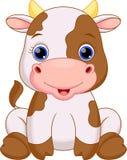 Χαριτωμένα κινούμενα σχέδια αγελάδων μωρών Στοκ φωτογραφία με δικαίωμα ελεύθερης χρήσης