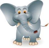 Χαριτωμένα κινούμενα σχέδια ελεφάντων Στοκ φωτογραφία με δικαίωμα ελεύθερης χρήσης