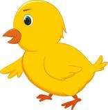 Χαριτωμένα κινούμενα σχέδια κοτόπουλου Στοκ Εικόνα