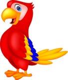 Χαριτωμένα κινούμενα σχέδια πουλιών παπαγάλων Στοκ Εικόνα
