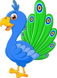 Χαριτωμένα κινούμενα σχέδια peacock διανυσματική απεικόνιση