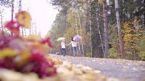 Χαριτωμένα κορίτσια εφήβων που τρέχουν πέρα από το δάσος φθινοπώρου με τις ομπρέλες φιλμ μικρού μήκους