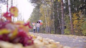 Χαριτωμένα κορίτσια εφήβων που τρέχουν πέρα από το δάσος φθινοπώρου απόθεμα βίντεο