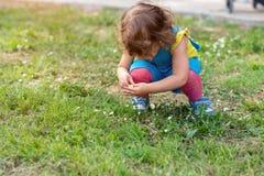 Χαριτωμένα λουλούδια επιλογής μικρών κοριτσιών στο πάρκο στοκ εικόνες με δικαίωμα ελεύθερης χρήσης