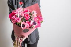 χαριτωμένα λουλούδια όμορφη ανθοδέσμη των ρόδινων anemones στο χέρι γυναικών η εργασία του ανθοκόμου σε ένα ανθοπωλείο οικογένεια Στοκ εικόνες με δικαίωμα ελεύθερης χρήσης