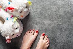 Χαριτωμένα μαλακά τρισδιάστατα llama παντόφλες και πόδια με το κόκκινο pedicure στοκ φωτογραφία