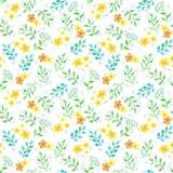 Χαριτωμένα λουλούδια, χορτάρια, χλόες Άνευ ραφής σχέδιο Ditsy watercolor Στοκ εικόνα με δικαίωμα ελεύθερης χρήσης