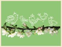 Χαριτωμένα πουλιά στον κλάδο δέντρων μηλιάς ανθών στο πράσινο υπόβαθρο ελεύθερη απεικόνιση δικαιώματος