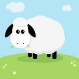 χαριτωμένα πρόβατα Στοκ Φωτογραφία