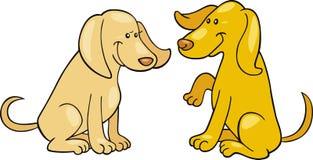 χαριτωμένα σκυλιά δύο Στοκ Φωτογραφίες