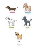 Χαριτωμένα σκυλιά κινούμενων σχεδίων των διάφορων φυλών Στοκ εικόνα με δικαίωμα ελεύθερης χρήσης