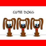 χαριτωμένα σκυλιά Στοκ Εικόνες