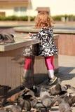 Χαριτωμένα ταΐζοντας περιστέρια μικρών κοριτσιών με crumbs ψωμιού Στοκ Εικόνες