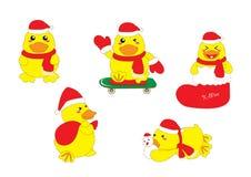 Χαριτωμένα Χριστούγεννα παπιών μωρών Στοκ φωτογραφίες με δικαίωμα ελεύθερης χρήσης