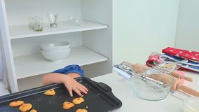 Χαριτωμένα stealing μπισκότα μικρών κοριτσιών απόθεμα βίντεο