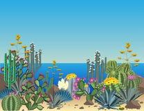 Χαριτωμένα succulents και διανυσματικό υπόβαθρο κάκτων Εγκαταστάσεις ακτών Στοκ Εικόνες