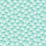 Χαριτωμένες άσπρες μαργαρίτες σχεδίων άνοιξη floral στη μέντα απεικόνιση αποθεμάτων