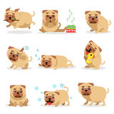 Χαριτωμένες αστείες δραστηριότητες σκυλιών μαλαγμένου πηλού κατά τη διάρκεια του συνόλου ημέρας Καθημερινές στερεότυπες διανυσματ Στοκ Εικόνα