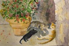Χαριτωμένες γάτες που βρίσκονται στη σκιά το καλοκαίρι, watercolour ελεύθερη απεικόνιση δικαιώματος