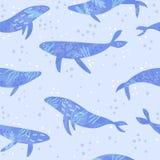 Χαριτωμένες γαλάζιες φάλαινες Στοκ φωτογραφία με δικαίωμα ελεύθερης χρήσης