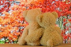 Χαριτωμένες καφετιές αρκούδες ζεύγους που κάθονται στο ξύλο που αγκαλιάζει το ένα το άλλο με Στοκ Φωτογραφία
