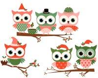 Χαριτωμένες κουκουβάγιες Χριστουγέννων στο κόκκινο και πράσινος απεικόνιση αποθεμάτων