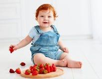 Χαριτωμένες δοκιμάζοντας φράουλες μωρών μικρών παιδιών πιπεροριζών Στοκ εικόνες με δικαίωμα ελεύθερης χρήσης