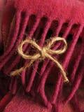 Χαριτωμένη ένωση τόξων σπάγγου στο ζωηρόχρωμο περιθώριο μαλλιού Στοκ Εικόνες