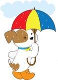 χαριτωμένη βροχή κουταβιών διανυσματική απεικόνιση
