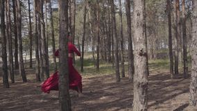 Χαριτωμένη γυναίκα ικανότητας στο κόκκινο φόρεμα που χορεύει στο δασικό τοπίο Όμορφος σύγχρονος χορευτής Χαριτωμένα τρεξίματα κορ απόθεμα βίντεο