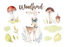 Χαριτωμένη ζωική απομονωμένη βρεφικός σταθμός απεικόνιση ελαφιών μωρών για τα παιδιά Δασικό σχέδιο boho Watercolor, watercolour,  Στοκ Εικόνες