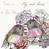 Χαριτωμένη διανυσματική απεικόνιση με το prettry ζεύγος των πουλιών Αγάπη Στοκ φωτογραφία με δικαίωμα ελεύθερης χρήσης