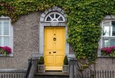 Χαριτωμένη κίτρινη πόρτα εισόδων σε ένα σπίτι που πλέκεται με τον κισσό Στοκ εικόνα με δικαίωμα ελεύθερης χρήσης