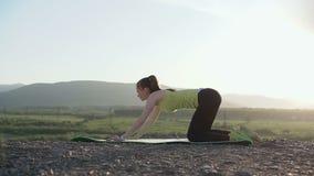 Χαριτωμένη κατάλληλη νέα γυναίκα που κάνει θερμαίνοντας το τέντωμα σε μια φύση Αθλητική ικανότητα γυμναστική γιόγκας Άσκηση ευελι απόθεμα βίντεο