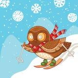 Χαριτωμένη κουκουβάγια κινούμενων σχεδίων που κάνει σκι και που έχει τη διασκέδαση Στοκ Εικόνες