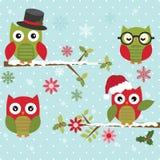 Χαριτωμένη κουκουβάγια Χριστουγέννων με τον κλάδο Στοκ Εικόνα