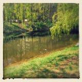 Χαριτωμένη λίμνη άνοιξη στοκ εικόνες